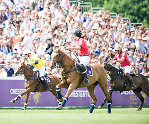 Win four tickets to Chestertons Polo in the Park